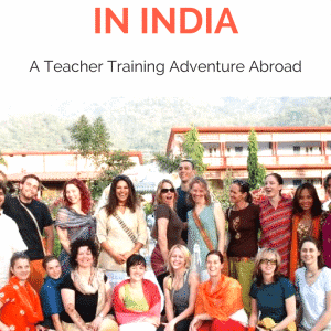 I got accosted by a cow – Adventures in Yoga Teacher Training in India
